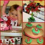 My little ladybug's first birthday!