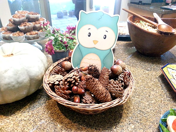 pine cones and owl
