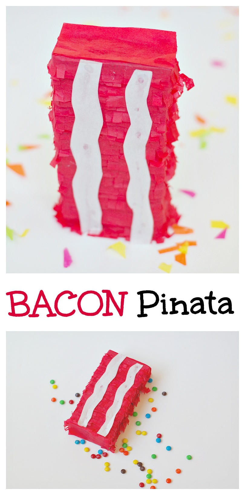 Bacon Pinata. Fun for parties and Father's Day.