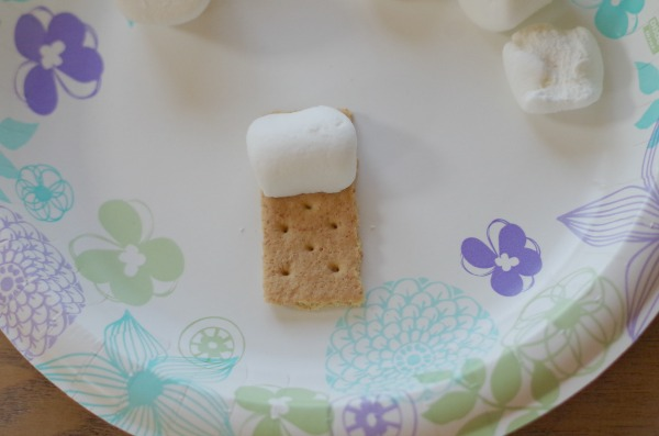 marshmallow stuck to graham cracker