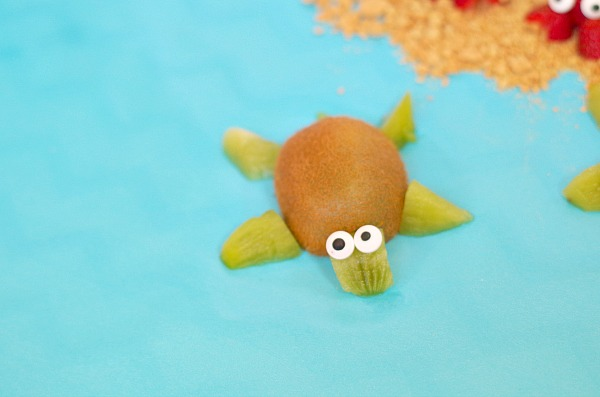 kiwi fruit turtle