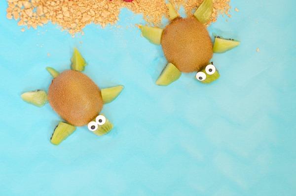turtle fruits