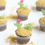 Cactus Garden Cupcakes