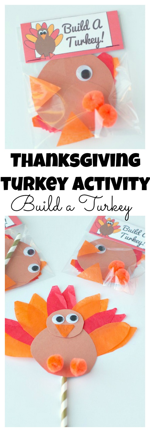Thanksgiving Turkey Activity, build a turkey!