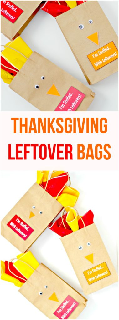 Thanksgiving Leftover Bags