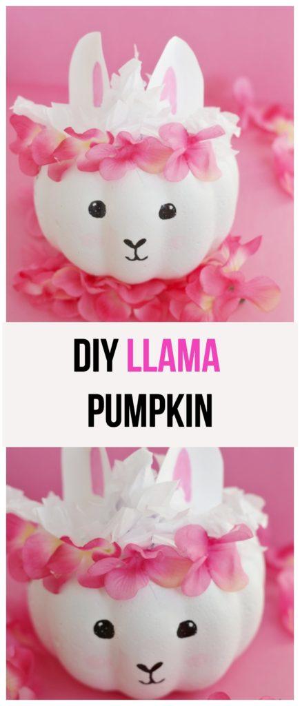 DIY Llama Pumpkin